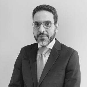 Wael Safwat